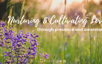 Nurturing and Cultivating Love through Presence and Awareness